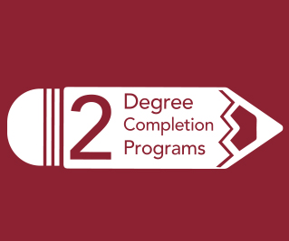 ccsj-numbers-degree-completion'